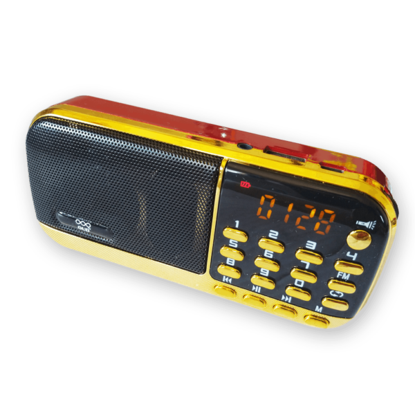 Portable Radio with Brahma Kumaris Audio Library (2981 MP3 Tracks)